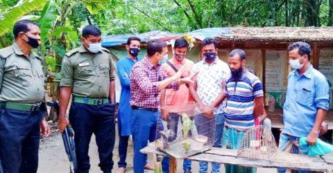 নলডাঙ্গায় উপজেলা প্রশাসনের হস্তক্ষেপে পাখি উদ্ধার