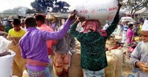 করোনায় ফসল নিয়ে সিন্ডিকেটের কবলে চলনবিলের কৃষক