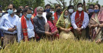 খাদ্য নিরাপত্তার চ্যালেঞ্জ মোকাবিলায় নিরলসভাবে কাজ করছেন দেশের বিজ্ঞানীরা : কৃষিমন্ত্রী